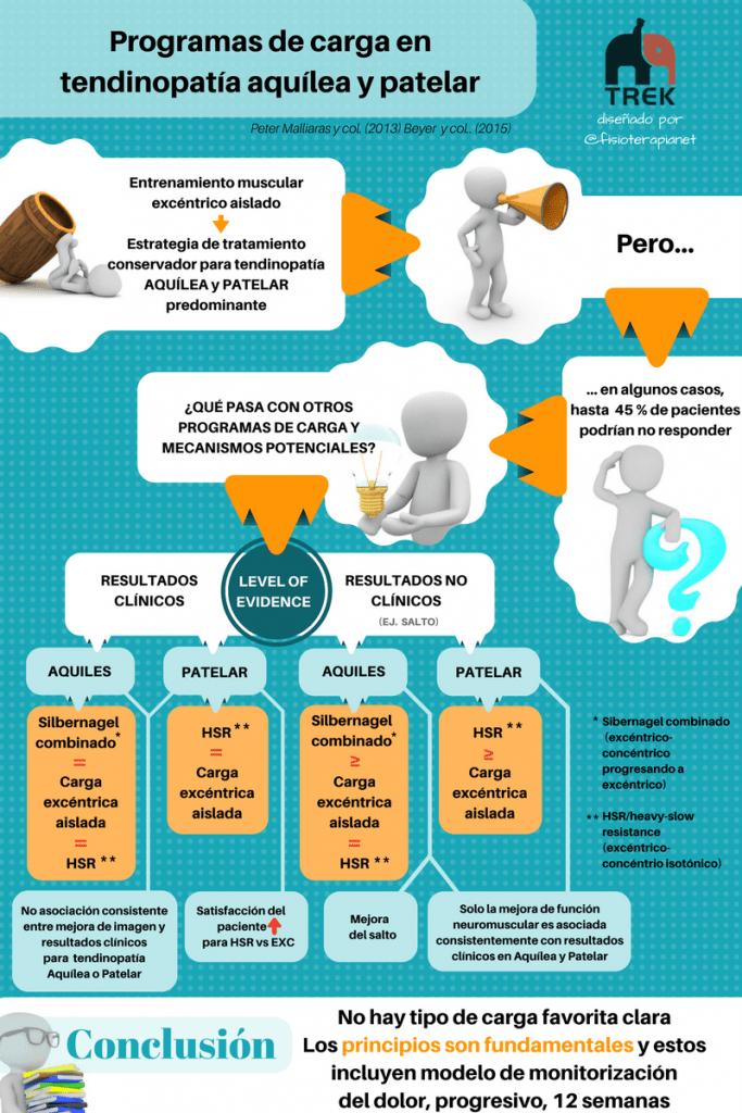 Infografía sobre la programas de carga en tendinopatías