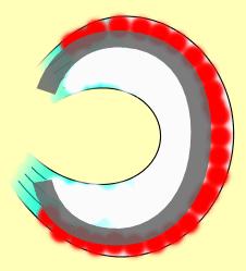 zona roja y blanca del menisco