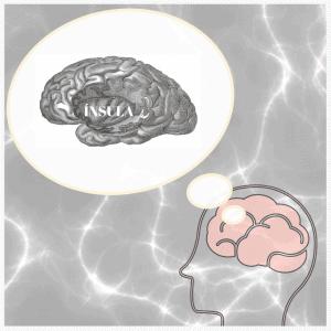 Parte del cerebro