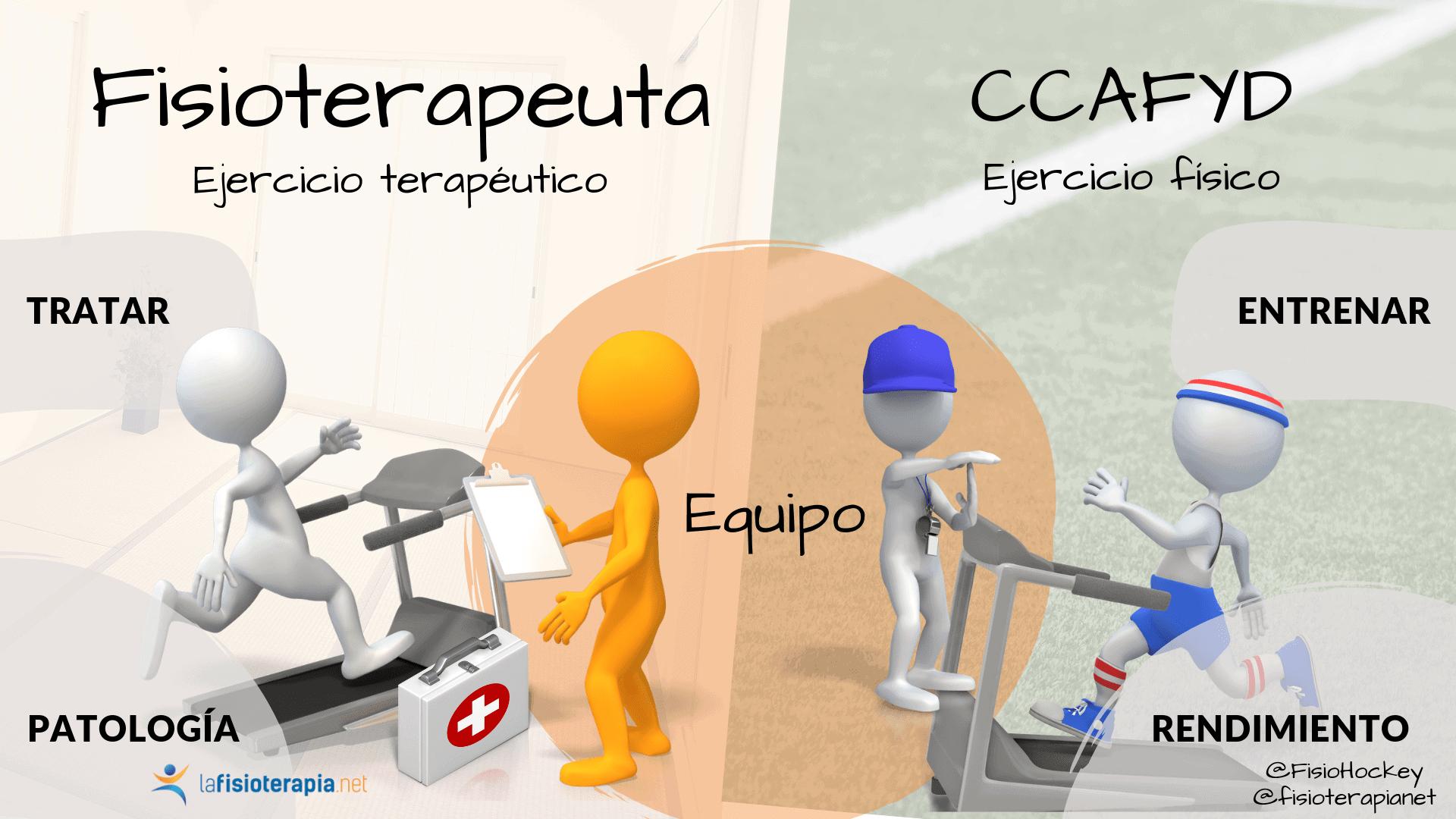fisioterapeuta trabaja en equipo