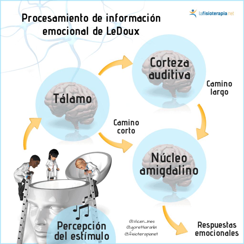 procesamiento de informacion emocional de ledoux