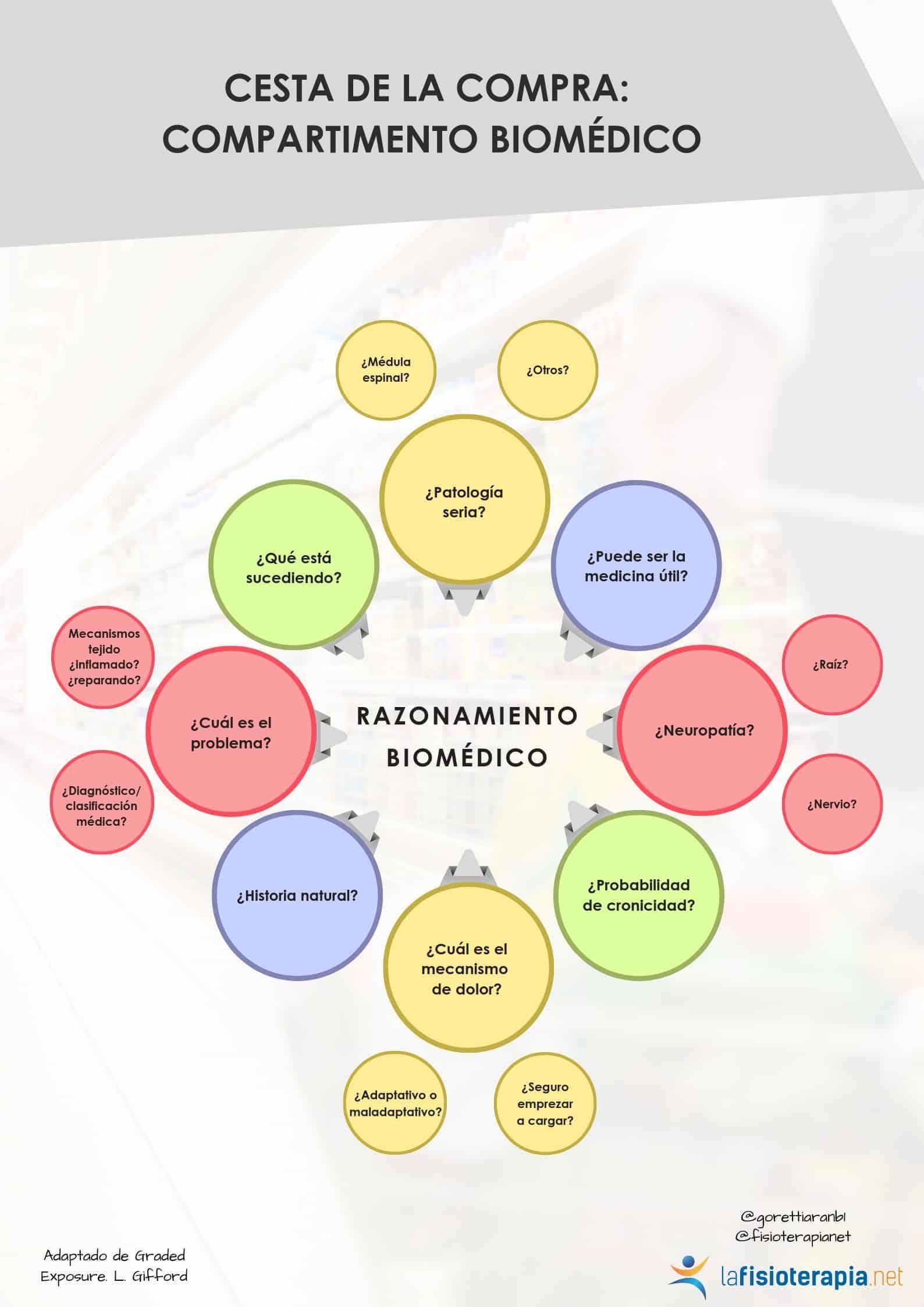 preguntas modelo biomedico