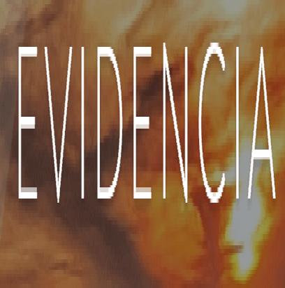 Blog Hacia una fisioterapia basada en la evidencia